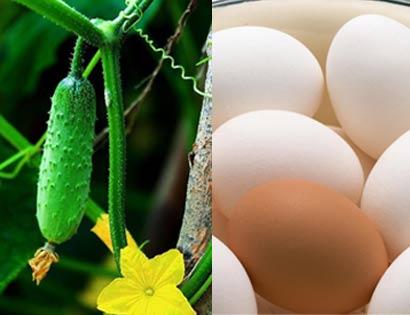 Dưỡng da bằng dưa leo, trứng gà